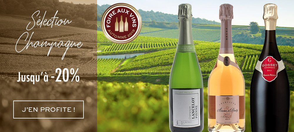 Foire aux Vins Bordeaux Automne 2019